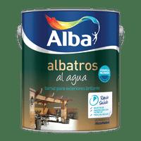 Albatros-Al-Agua